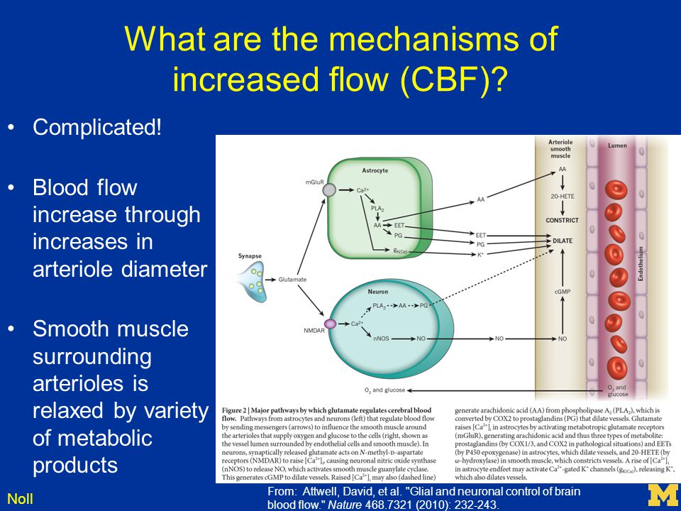 What are the mechanisms of increased flow (CBF)