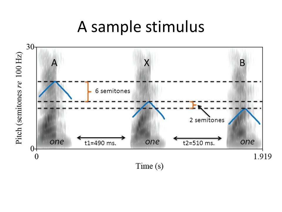 A sample stimulus A X B 6 semitones 2 semitones t1=490 ms. t2=510 ms.