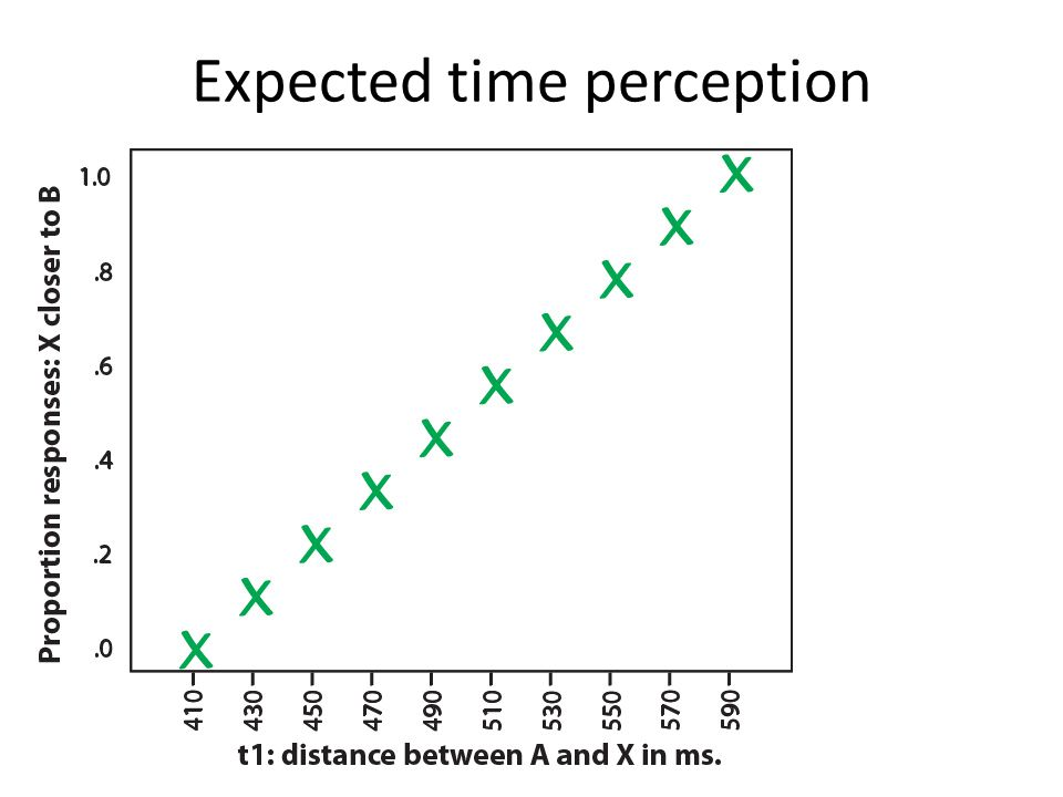 Expected time perception