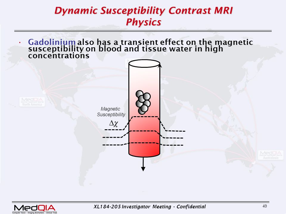 Dynamic Susceptibility Contrast MRI Physics