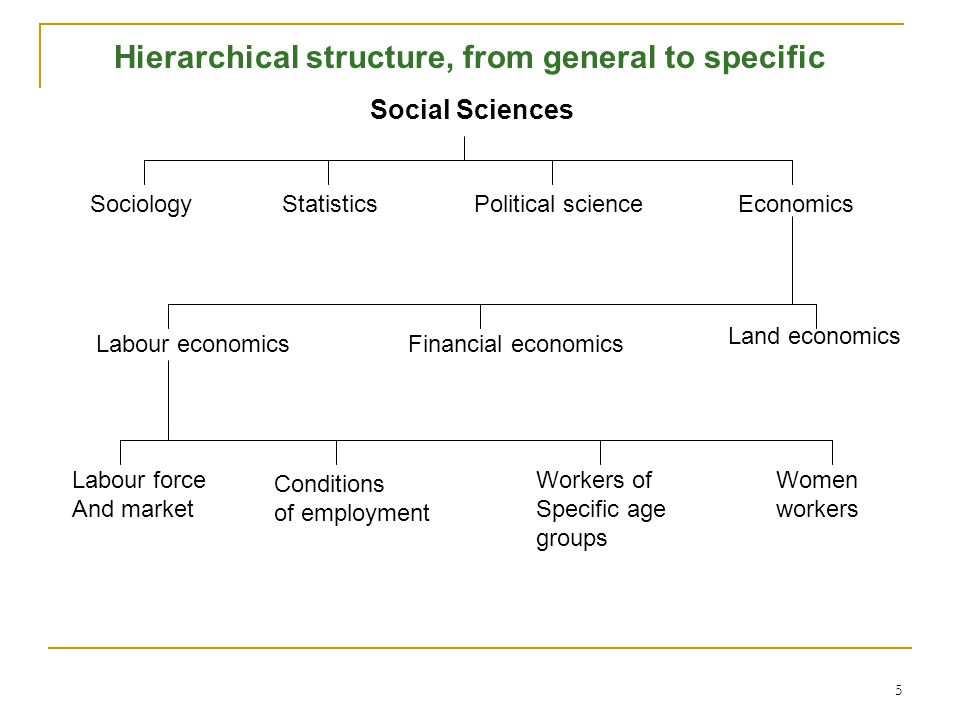 Hierarchical structure, from general to specific