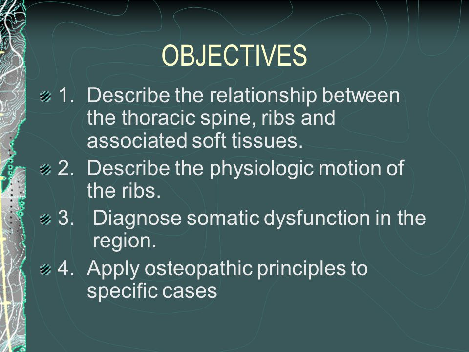 OBJECTIVES 1. Describe the relationship between the thoracic spine, ribs and associated soft tissues.