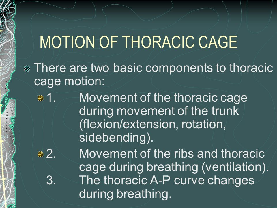 MOTION OF THORACIC CAGE