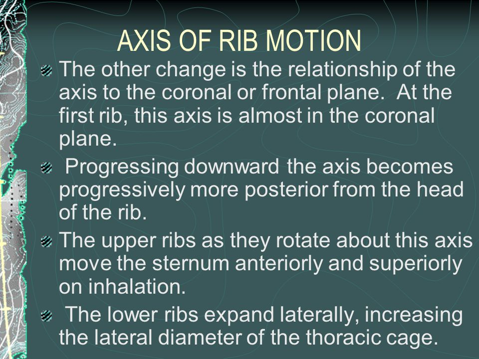 AXIS OF RIB MOTION