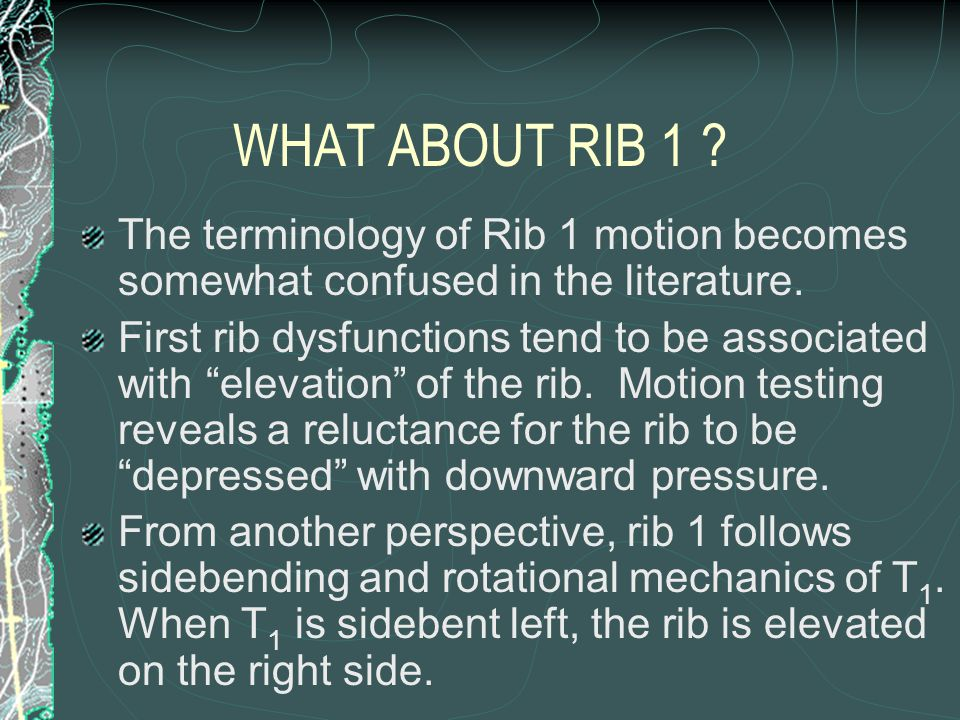 WHAT ABOUT RIB 1 The terminology of Rib 1 motion becomes somewhat confused in the literature.