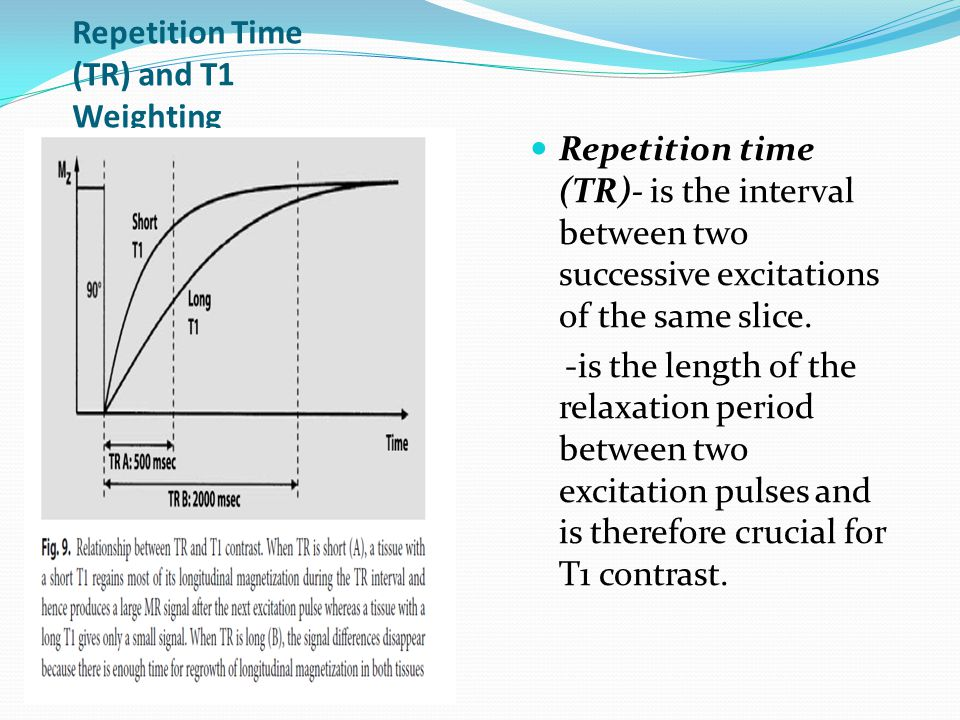 Repetition Time (TR) and T1 Weighting