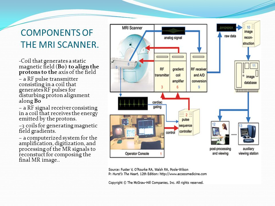 COMPONENTS OF THE MRI SCANNER.