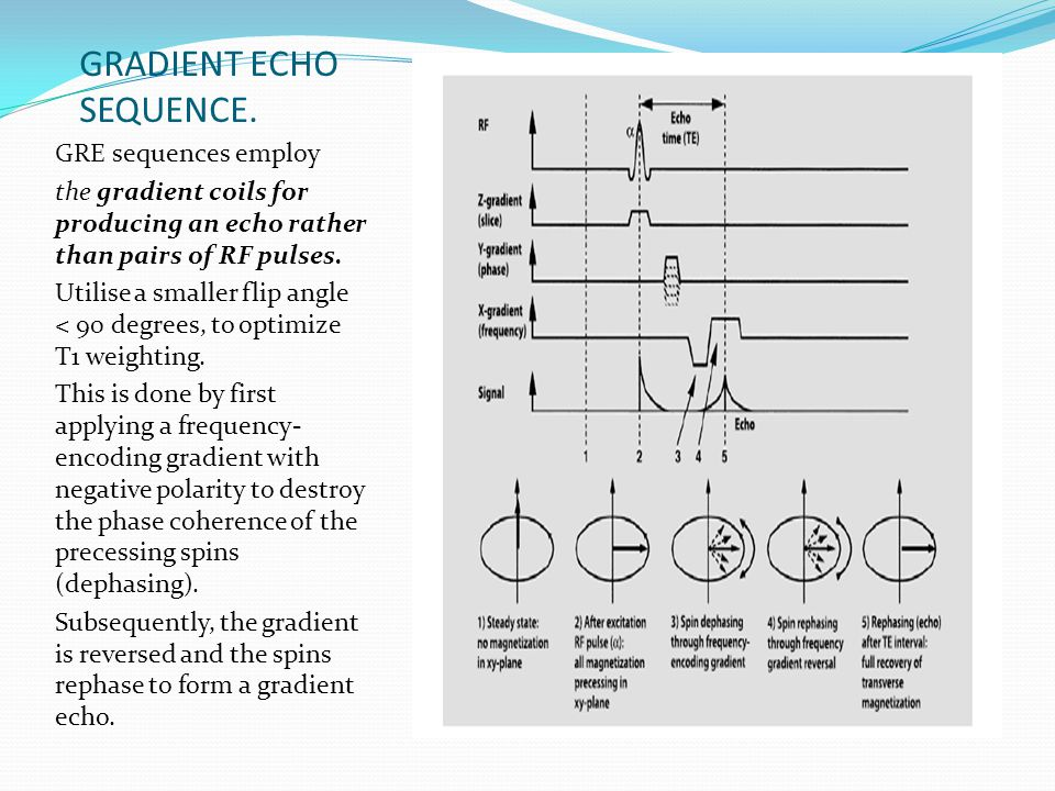 GRADIENT ECHO SEQUENCE.
