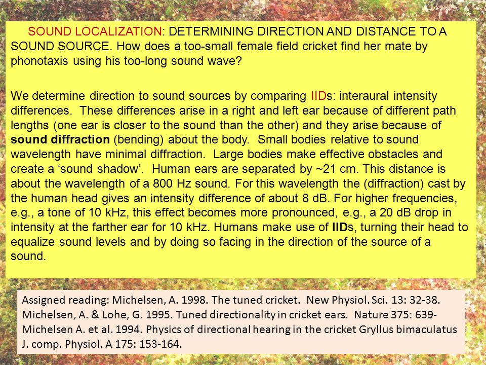 SOUND LOCALIZATION: DETERMINING DIRECTION AND DISTANCE TO A SOUND SOURCE. How does a too-small female field cricket find her mate by phonotaxis using his too-long sound wave We determine direction to sound sources by comparing IIDs: interaural intensity differences. These differences arise in a right and left ear because of different path lengths (one ear is closer to the sound than the other) and they arise because of sound diffraction (bending) about the body. Small bodies relative to sound wavelength have minimal diffraction. Large bodies make effective obstacles and create a 'sound shadow'. Human ears are separated by ~21 cm. This distance is about the wavelength of a 800 Hz sound. For this wavelength the (diffraction) cast by the human head gives an intensity difference of about 8 dB. For higher frequencies, e.g., a tone of 10 kHz, this effect becomes more pronounced, e.g., a 20 dB drop in intensity at the farther ear for 10 kHz. Humans make use of IIDs, turning their head to equalize sound levels and by doing so facing in the direction of the source of a sound.