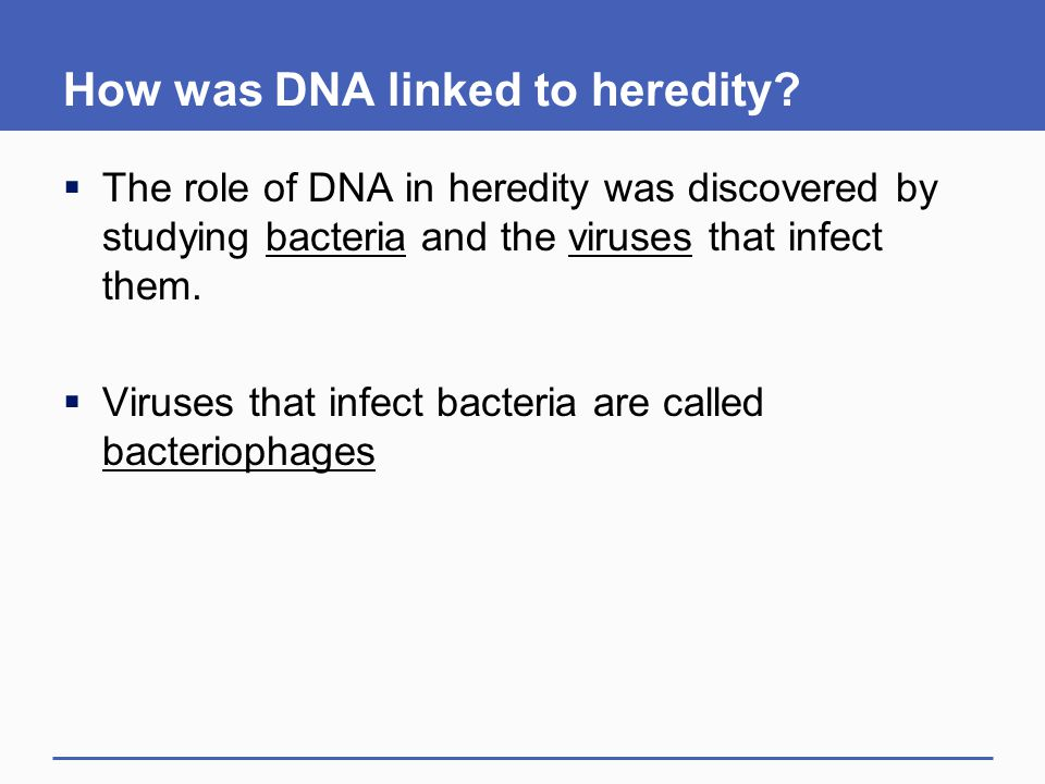 How was DNA linked to heredity