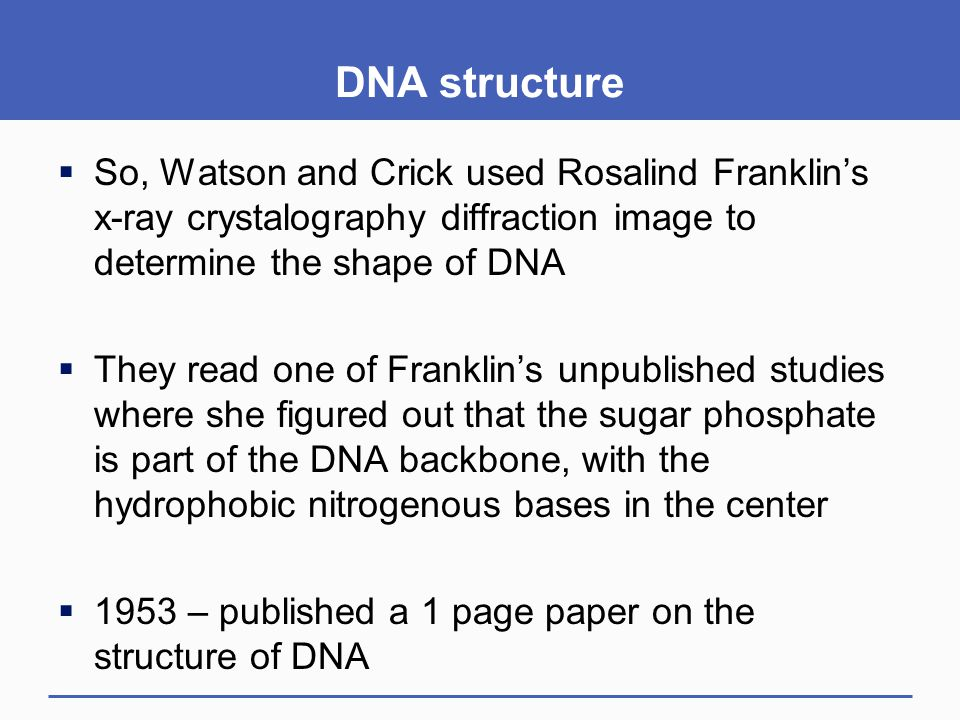 DNA structure So, Watson and Crick used Rosalind Franklin's x-ray crystalography diffraction image to determine the shape of DNA.