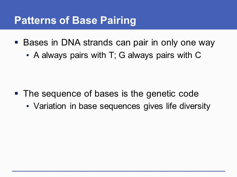 Patterns of Base Pairing