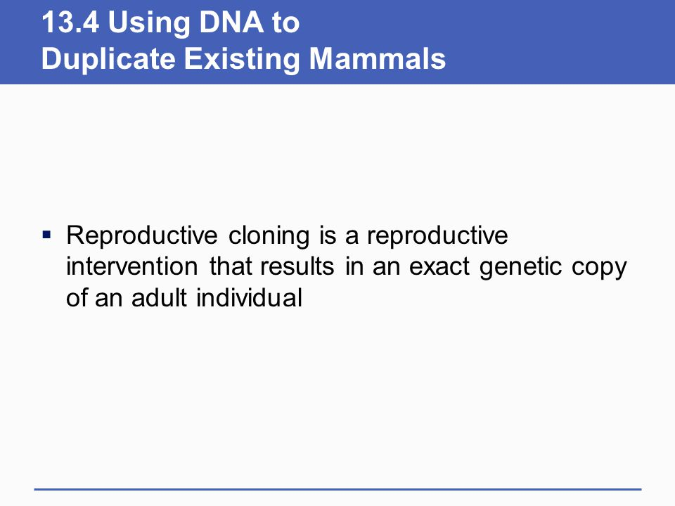 13.4 Using DNA to Duplicate Existing Mammals