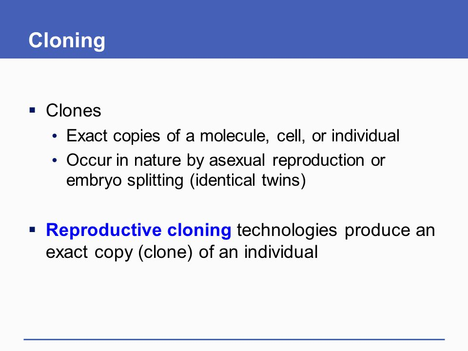 Cloning Clones. Exact copies of a molecule, cell, or individual. Occur in nature by asexual reproduction or embryo splitting (identical twins)