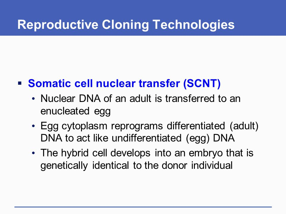 Reproductive Cloning Technologies