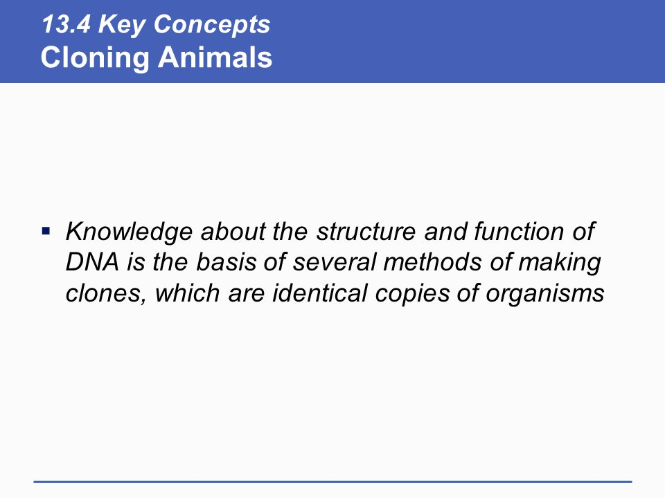 13.4 Key Concepts Cloning Animals