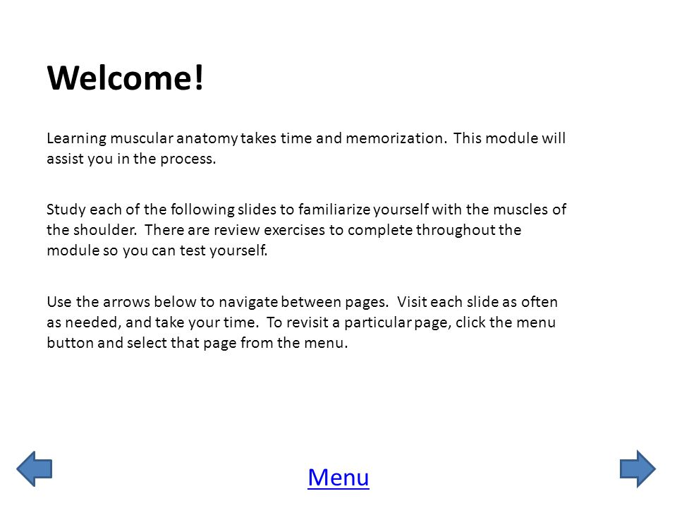 Welcome! Learning muscular anatomy takes time and memorization. This module will assist you in the process.