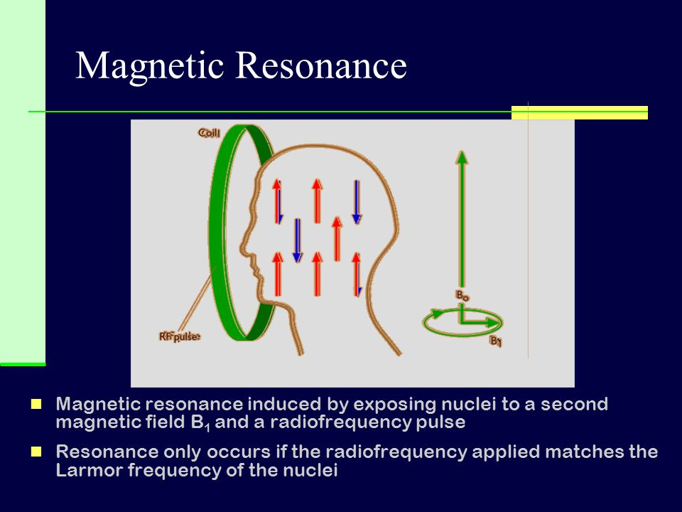 Magnetic Resonance Magnetic resonance induced by exposing nuclei to a second magnetic field B1 and a radiofrequency pulse.