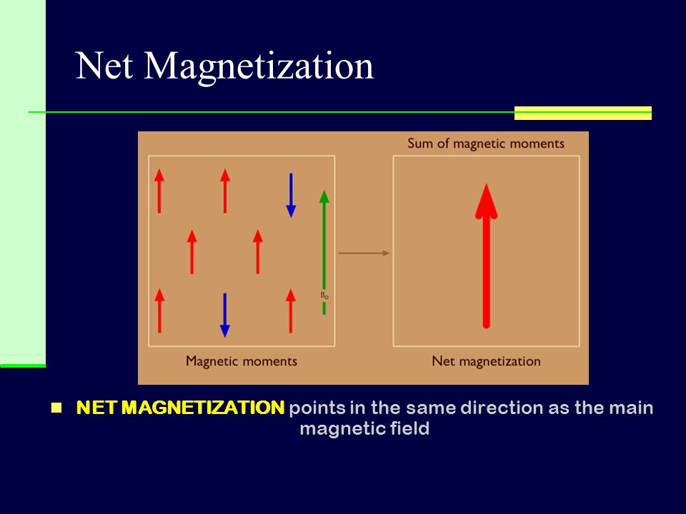 Net Magnetization NET MAGNETIZATION points in the same direction as the main magnetic field