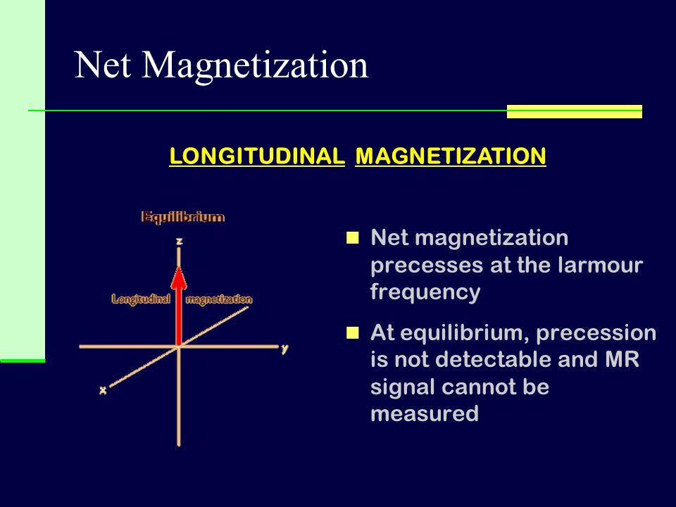 Net Magnetization LONGITUDINAL MAGNETIZATION