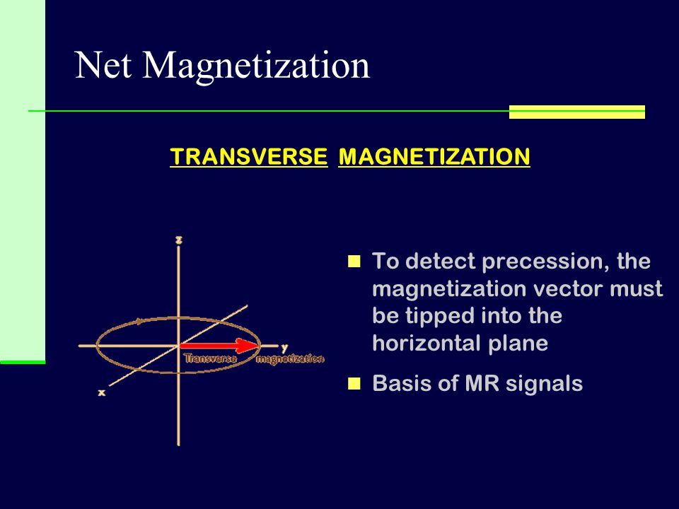 Net Magnetization TRANSVERSE MAGNETIZATION