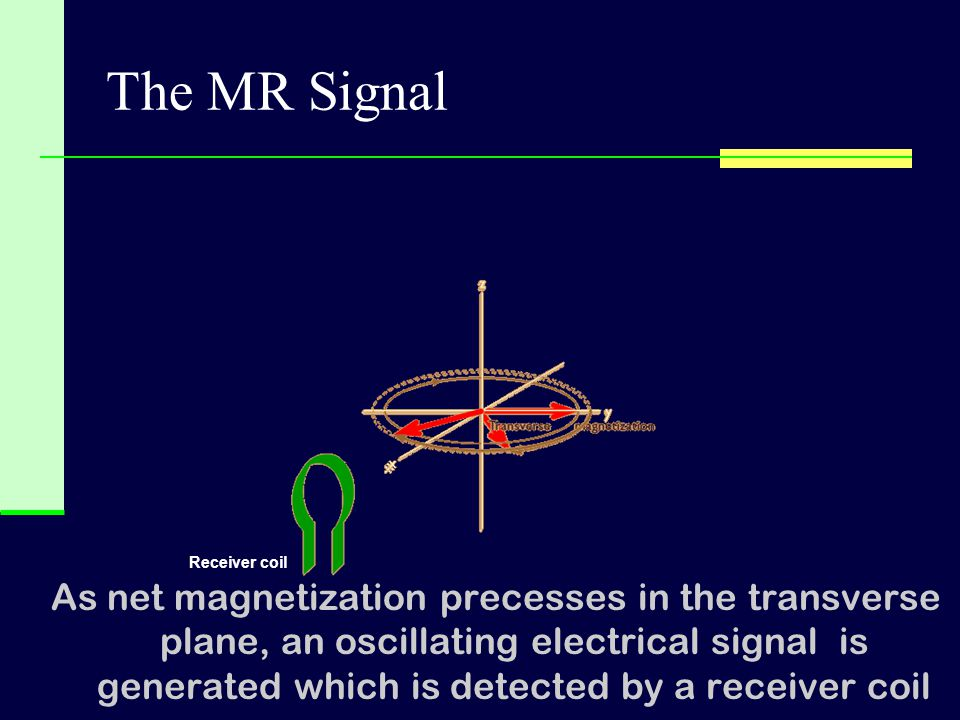The MR Signal Receiver coil.