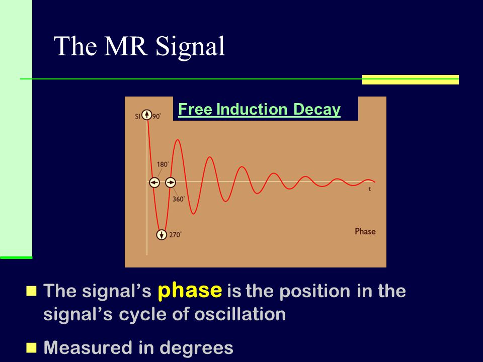 The MR Signal Free Induction Decay. The signal's phase is the position in the signal's cycle of oscillation.