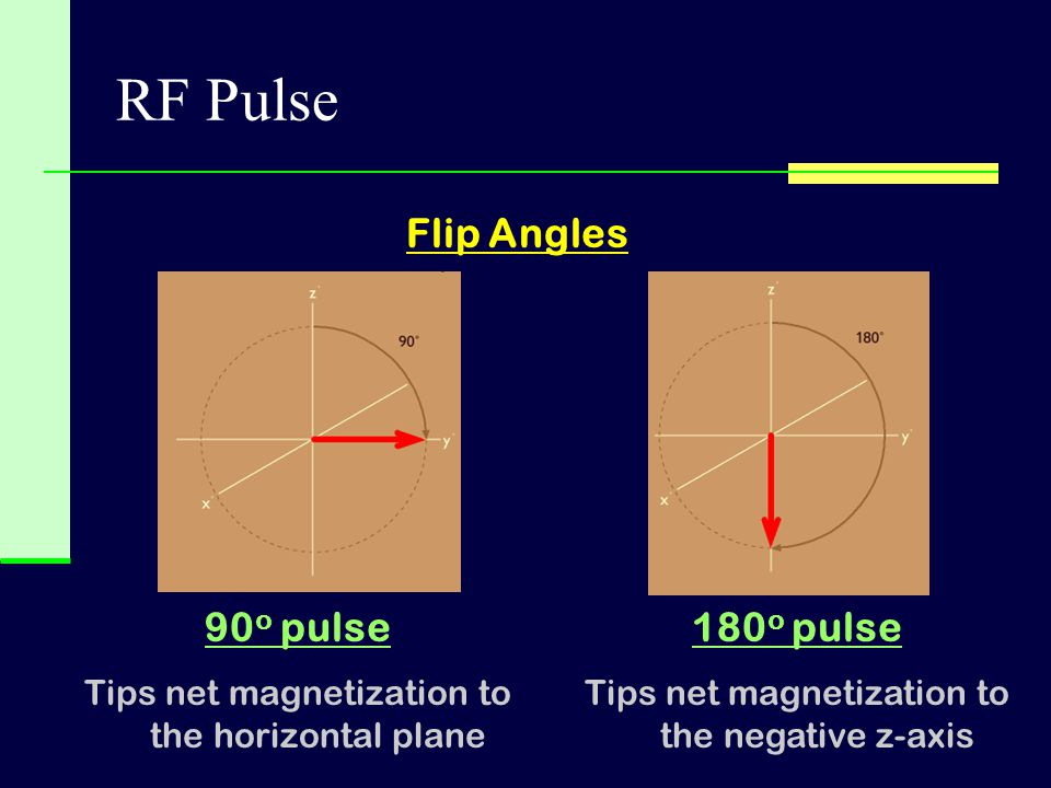 RF Pulse Flip Angles 90o pulse 180o pulse