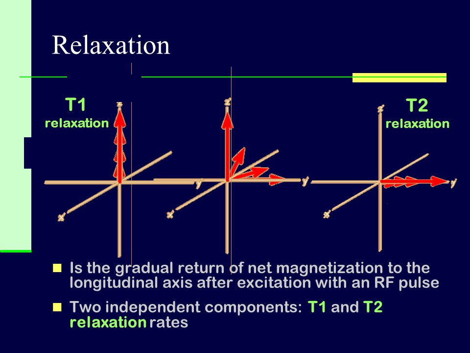 Relaxation T1. relaxation. T2. relaxation. Is the gradual return of net magnetization to the longitudinal axis after excitation with an RF pulse.