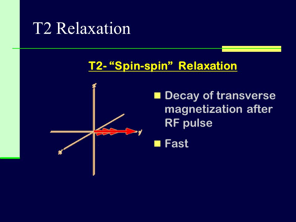 T2- Spin-spin Relaxation