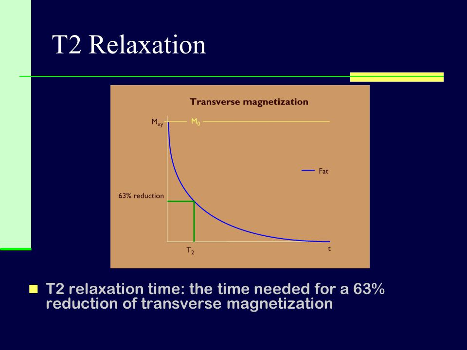 T2 Relaxation T2 relaxation time: the time needed for a 63% reduction of transverse magnetization