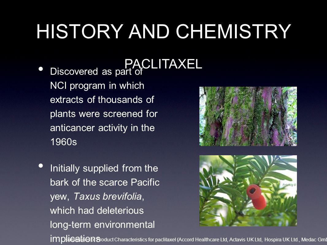 HISTORY AND CHEMISTRY PACLITAXEL