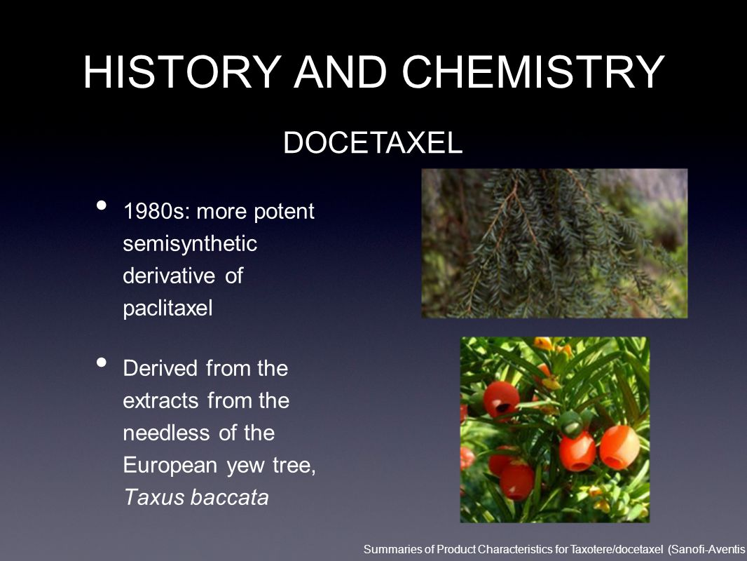 HISTORY AND CHEMISTRY DOCETAXEL