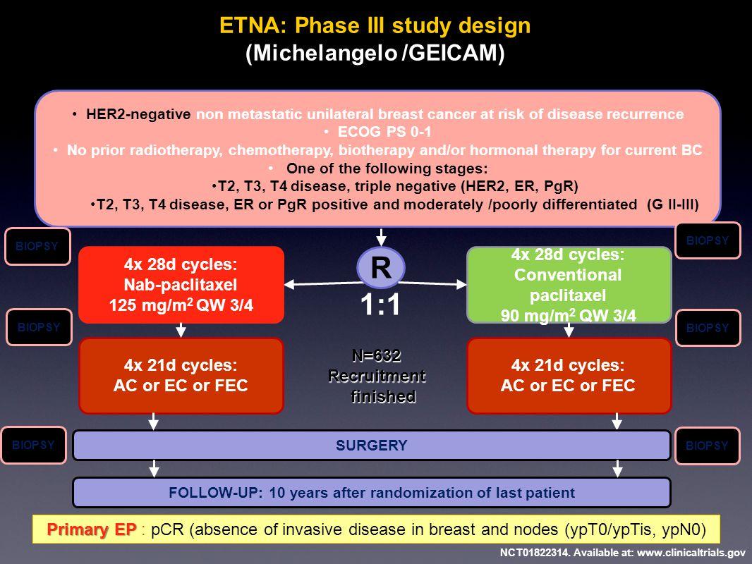 ETNA: Phase III study design (Michelangelo /GEICAM)