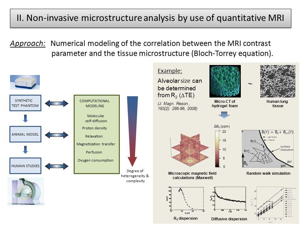 II. Non-invasive microstructure analysis by use of quantitative MRI
