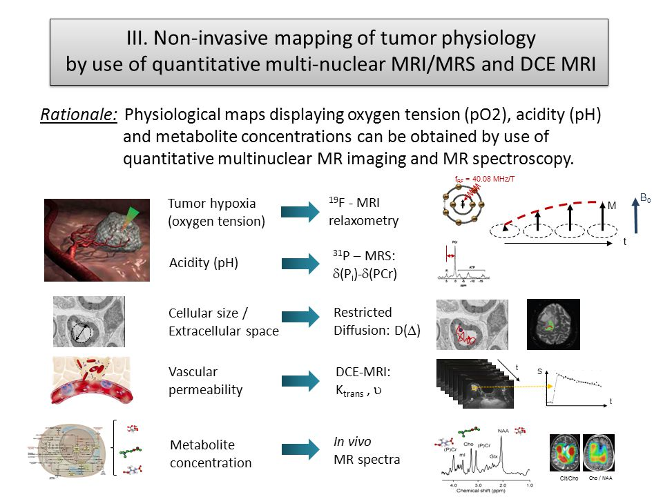 III. Non-invasive mapping of tumor physiology