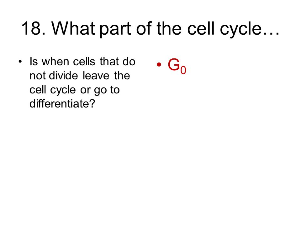 18. What part of the cell cycle…