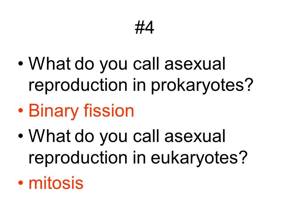 #4 What do you call asexual reproduction in prokaryotes Binary fission. What do you call asexual reproduction in eukaryotes