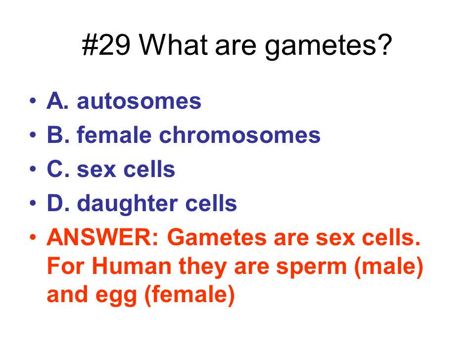 #29 What are gametes A. autosomes B. female chromosomes C. sex cells