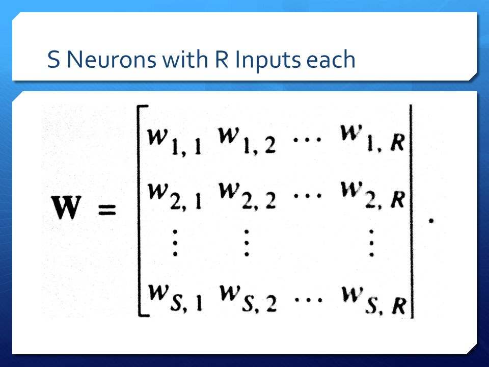 S Neurons with R Inputs each
