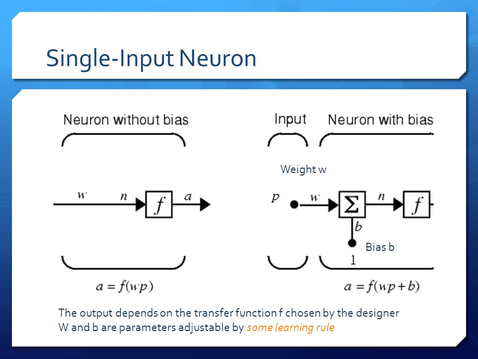 Single-Input Neuron Weight w Bias b