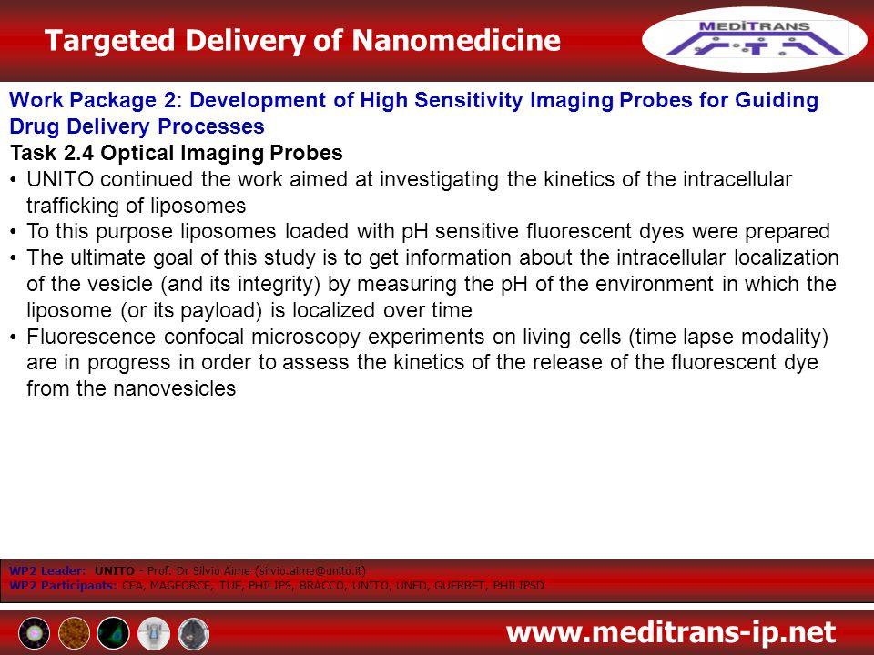 Task 2.4 Optical Imaging Probes