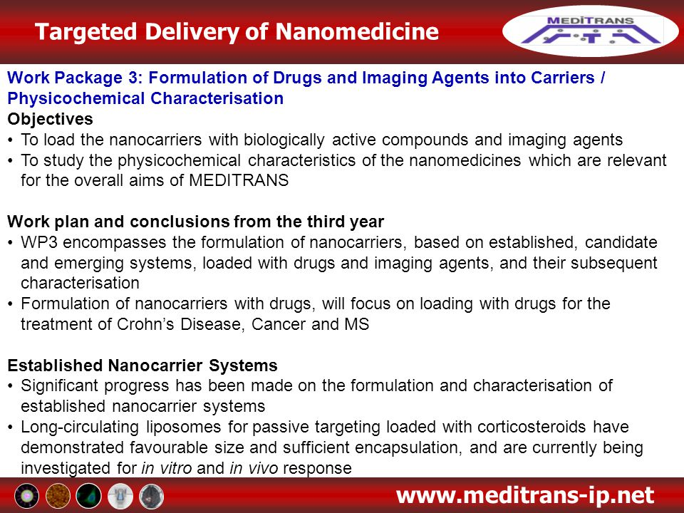 Work Package 3: Formulation of Drugs and Imaging Agents into Carriers / Physicochemical Characterisation