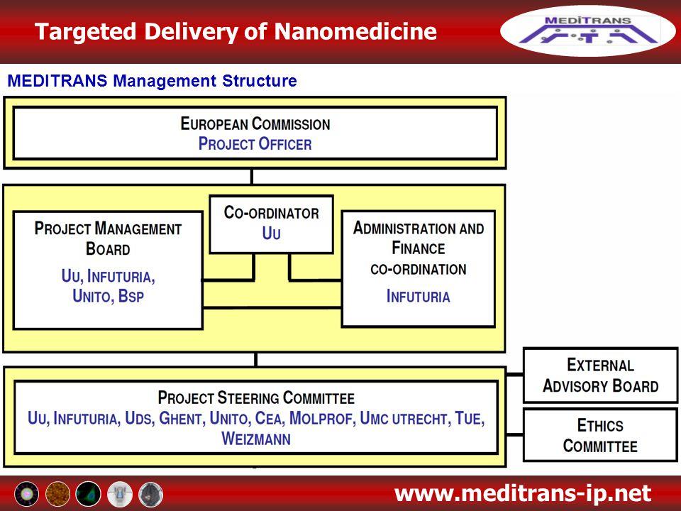 MEDITRANS Management Structure