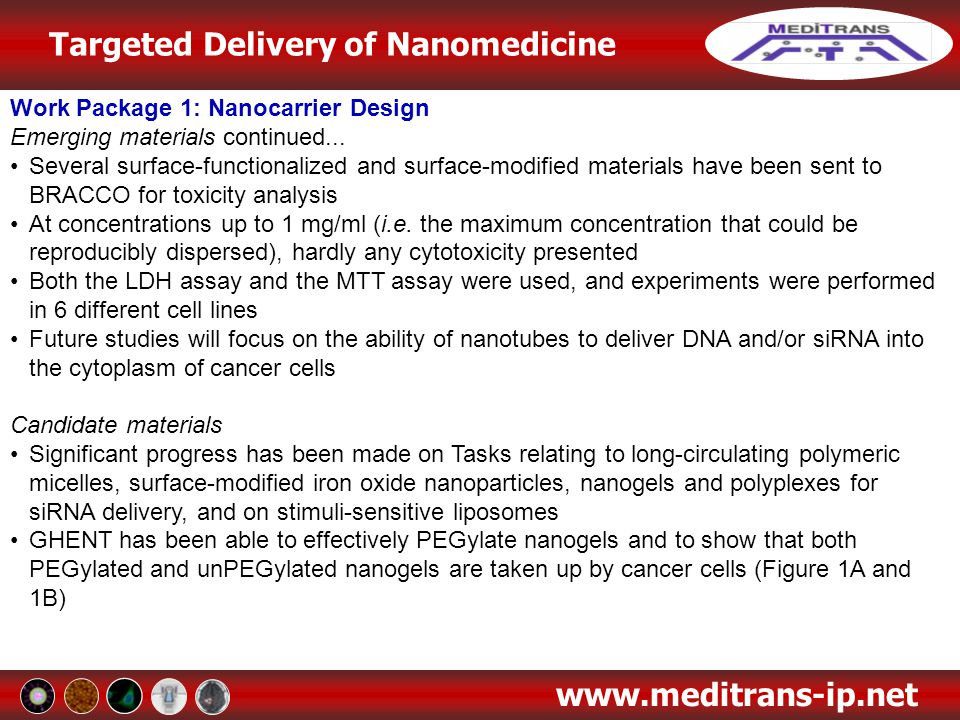Work Package 1: Nanocarrier Design