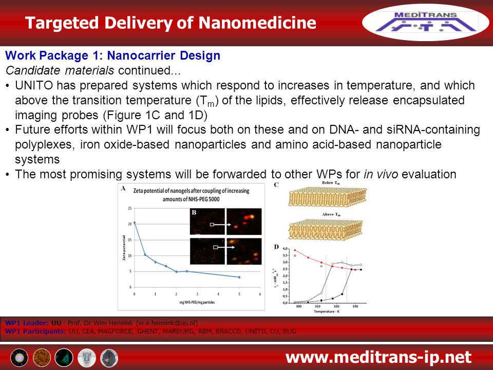 Work Package 1: Nanocarrier Design Candidate materials continued...