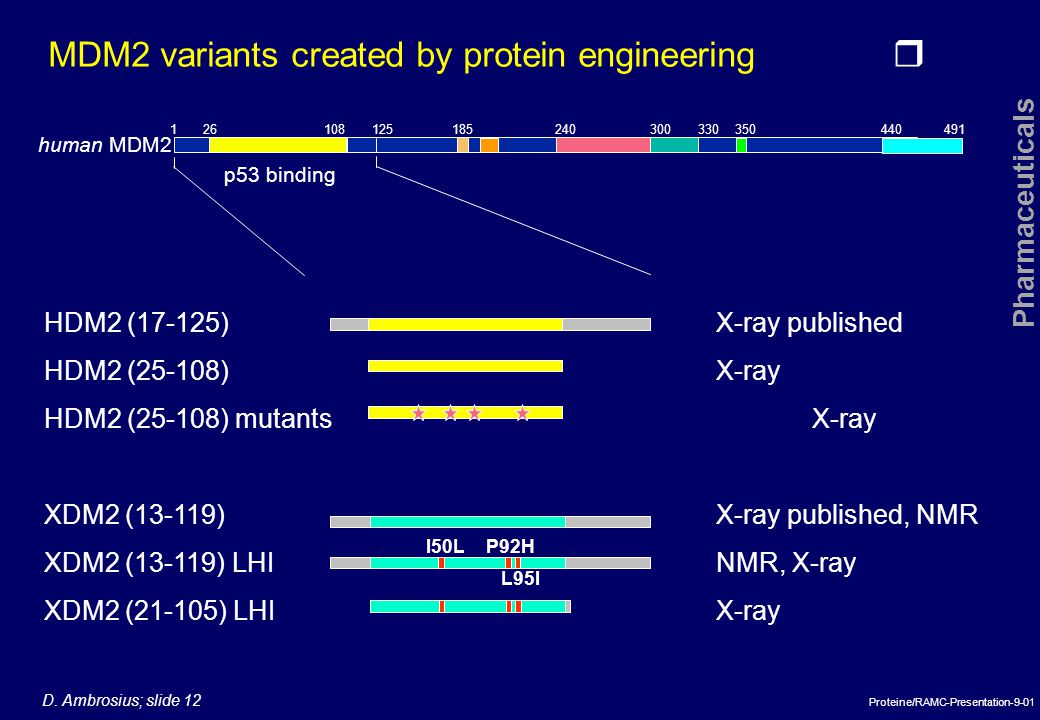 MDM2 variants created by protein engineering
