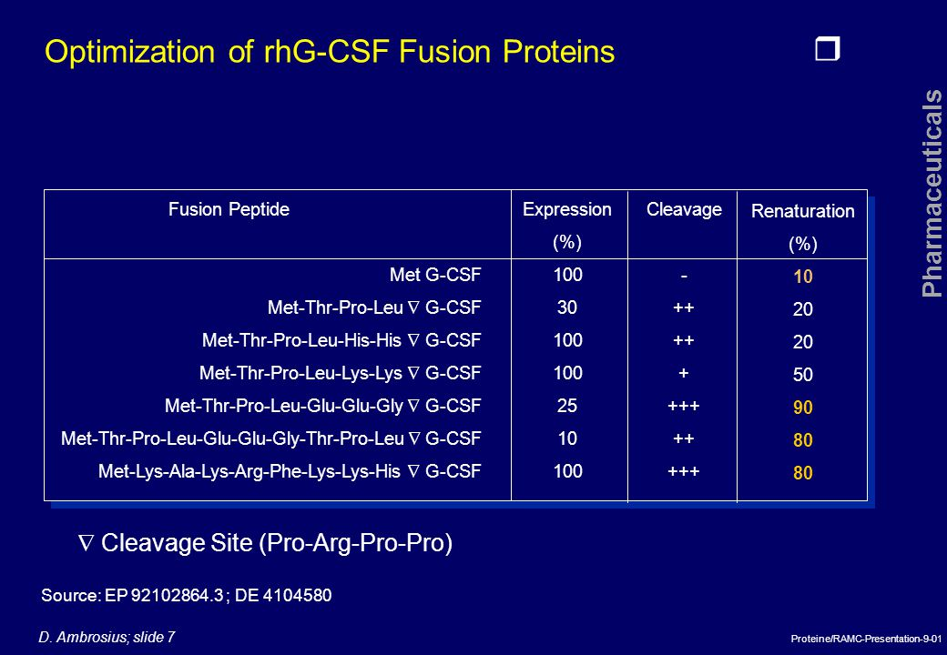 Optimization of rhG-CSF Fusion Proteins