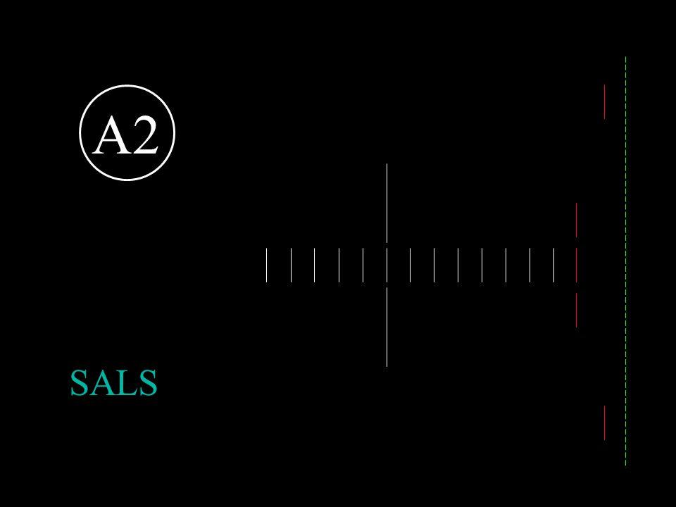 A2 Short approach light system. SALS 25