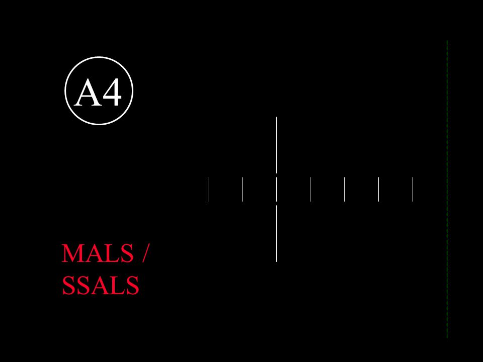 A4 MALS / SSALS Short, simplified approach lighting system.
